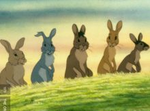 Wzgórze Królików - Criterion Cast